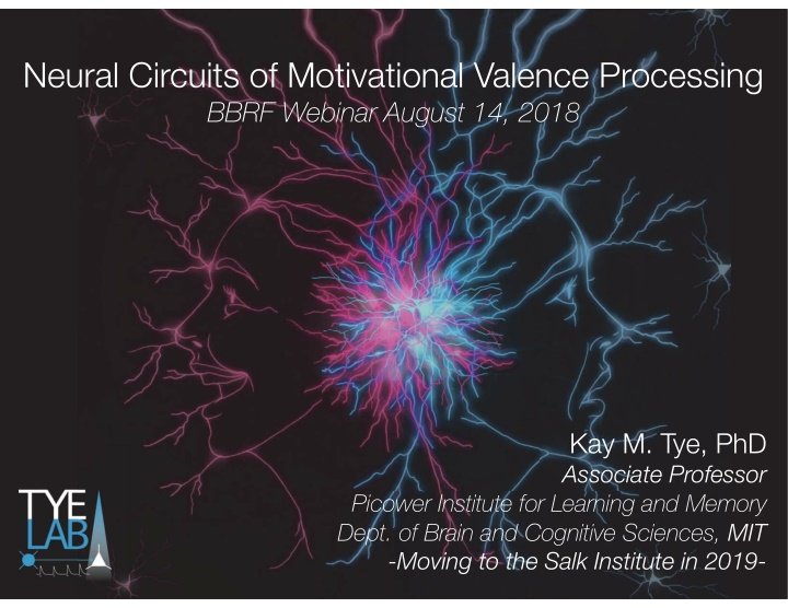 neural circuits of motivational valence