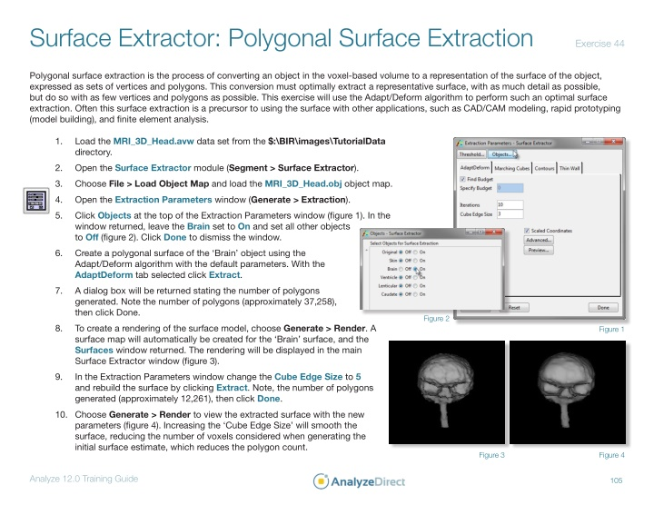 surface extractor polygonal surface extraction