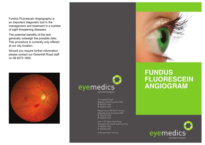 fundus fluorescein angiography is an important