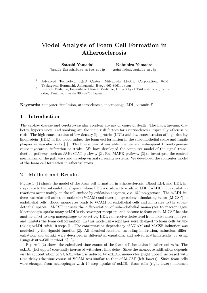 model analysis of foam cell formation