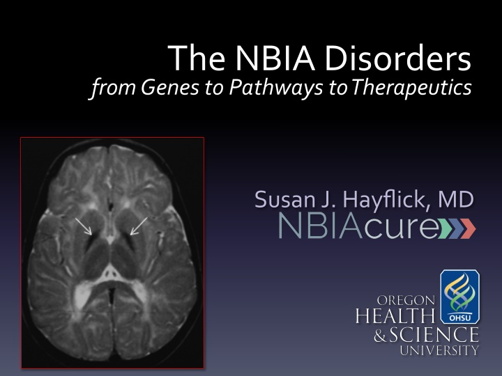 the nbia disorders from genes to pathways