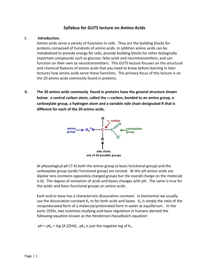 syllabus for guts lecture on amino acids