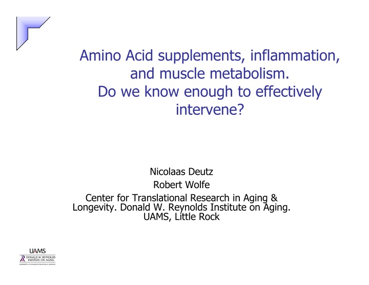 amino acid supplements inflammation and muscle