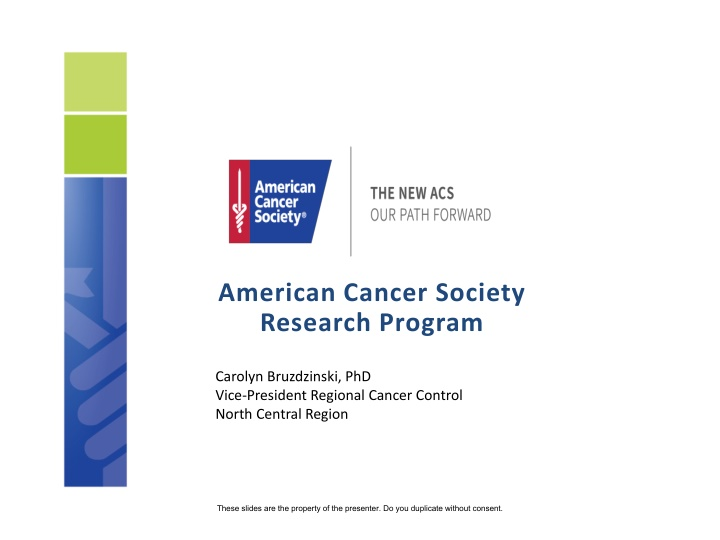 american cancer society research program