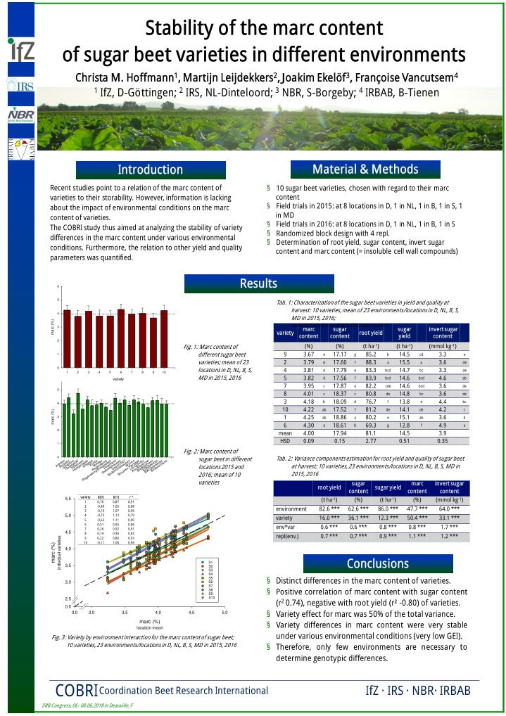 stability of the marc content of sugar beet