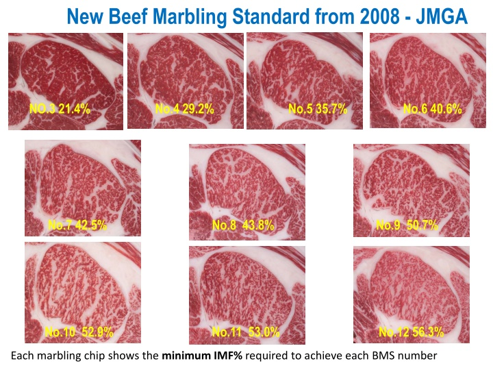 new beef marbling standard from 2008 jmga