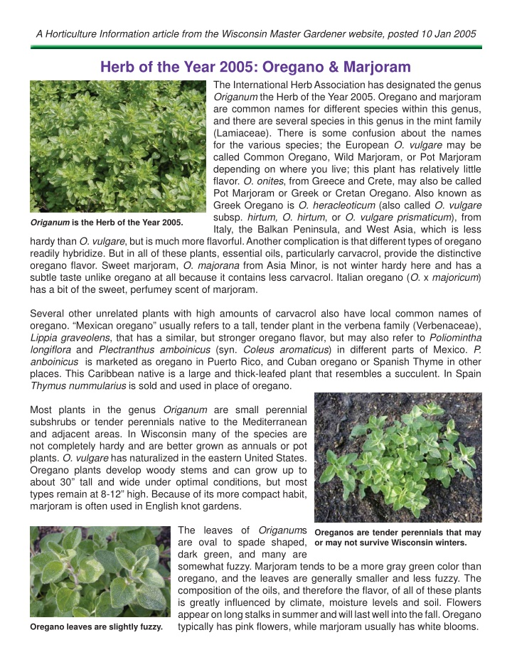 a horticulture information article from