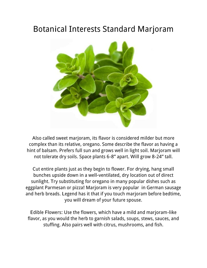 botanical interests standard marjoram
