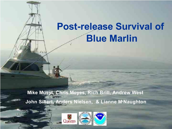 post release survival of blue marlin
