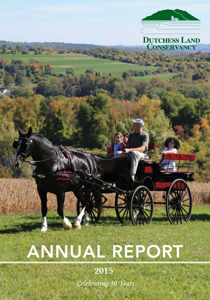annual report 2015 celebrating 30 years